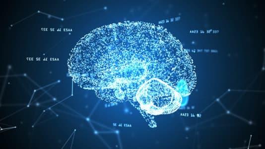 Neuromyths image